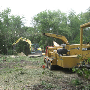 Greensburg, PA Land Clearing and Tree Removal