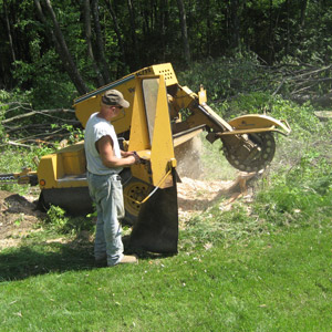 Stump Removal Services in Westmoreland County