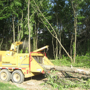 Land Clearing Services in Westmoreland County